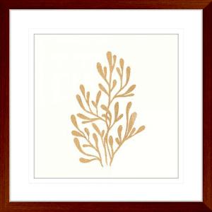 24 Karat Sealife 03 | Teak Framed Artwork