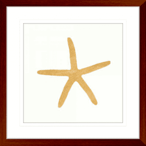 24 Karat Sealife 04 | Teak Framed Artwork