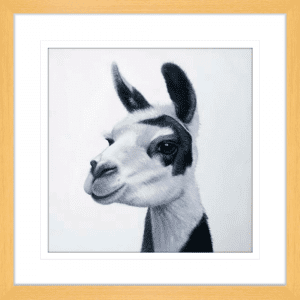 Lovable Llamas 02 | Oak Framed Artwork