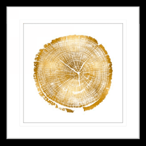 Timber Gold 01 | Black Framed Artwork