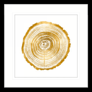 Timber Gold 02 | Black Framed Artwork