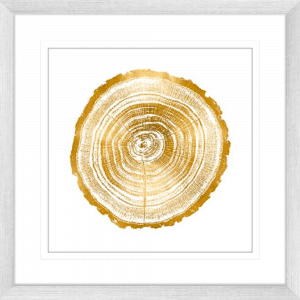 Timber Gold 02 | Silver Framed Artwork