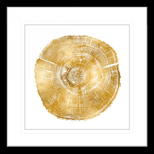 Timber Gold 03 | Black Framed Artwork