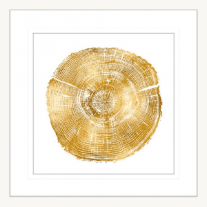 Timber Gold 03 | White Framed Artwork