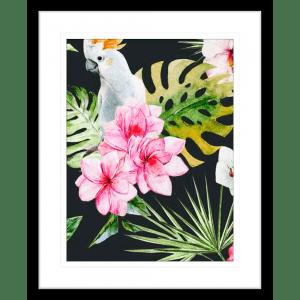 Crested Cockatoo 02 | Black Framed Artwork