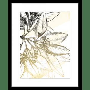 Fade Botanicals 01 | Black Framed Artwork