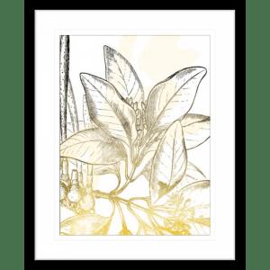 Fade Botanicals 02 | Black Framed Artwork