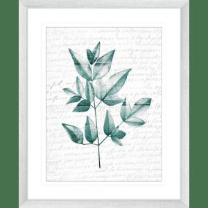 Pressed Leaves 01   Silver Framed Artwork