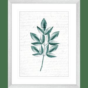 Pressed Leaves 02   Silver Framed Artwork