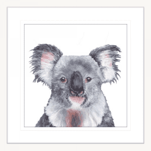Koala Gaze | White Framed Artwork