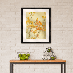 Kangaroo Paw 01 | Artwork Styled Room
