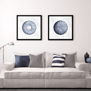 Urchin Shell | Artwork Styled Room