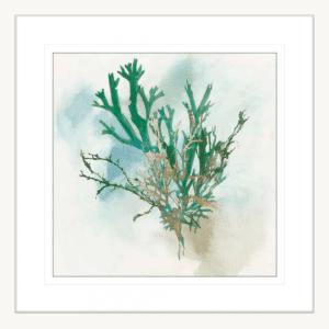 Green Coral 01 | White Framed Artwork