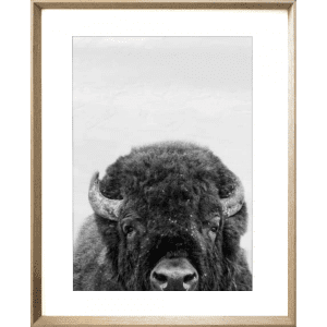 Call of the wild 02 | Cashew Deep Dish Framed Print