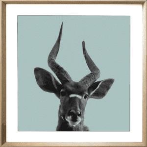Call of the wild 04 | Cashew Deep Dish Framed Print